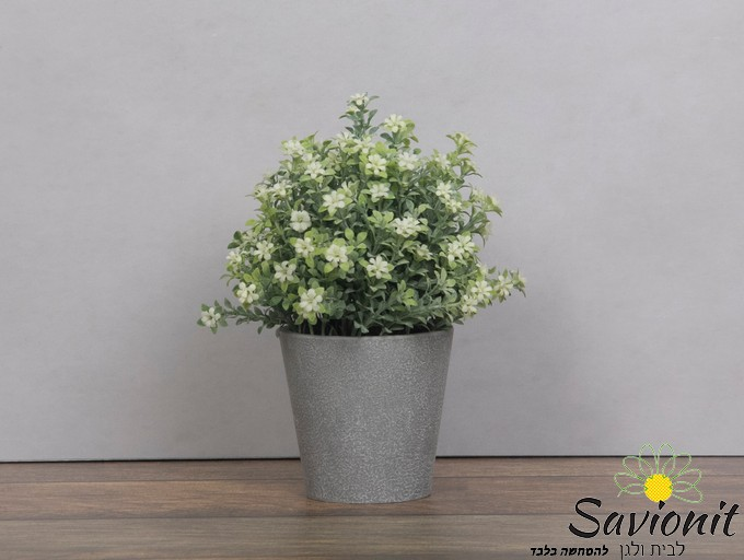 עציץ פלסטיק דמוי בטון פרח לבן